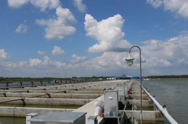 """2021-07-09 17_52_18-全球产量第一的中国水产行业如何""""既要又要还要""""?USSEC:你可以!"""